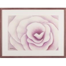 Fialová ruža II.
