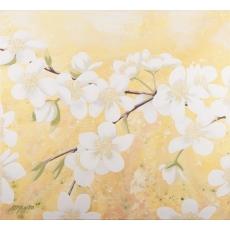 Zamilovaná jar