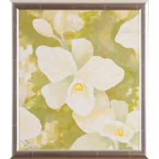 Orchidea v zelenom